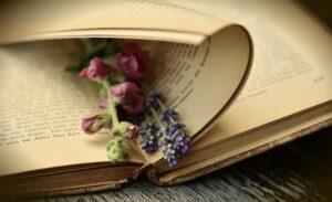 Le pagine di un vecchio libro con in mezzo fiori freschi di campo